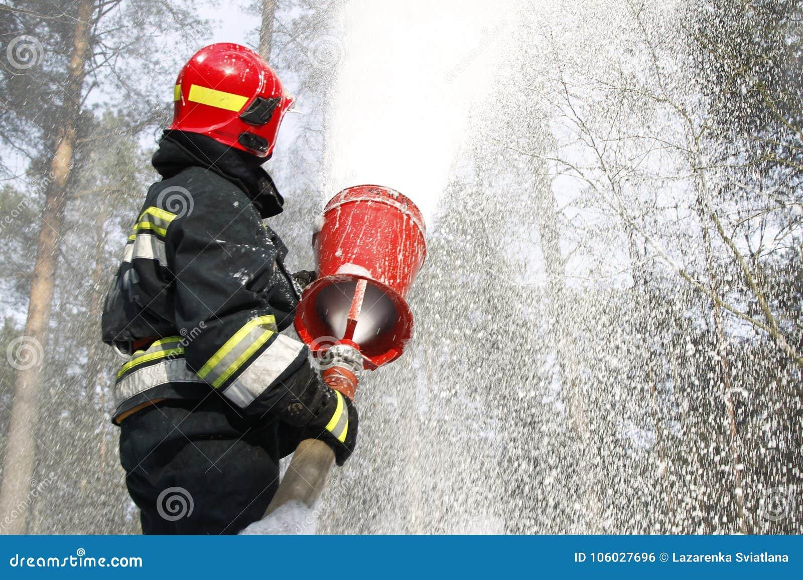 Éteignez-vous l incendie de forêt