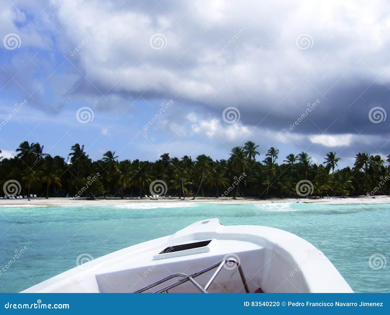 étoile De Mer En République Dominicaine La Caraïbe De Plage