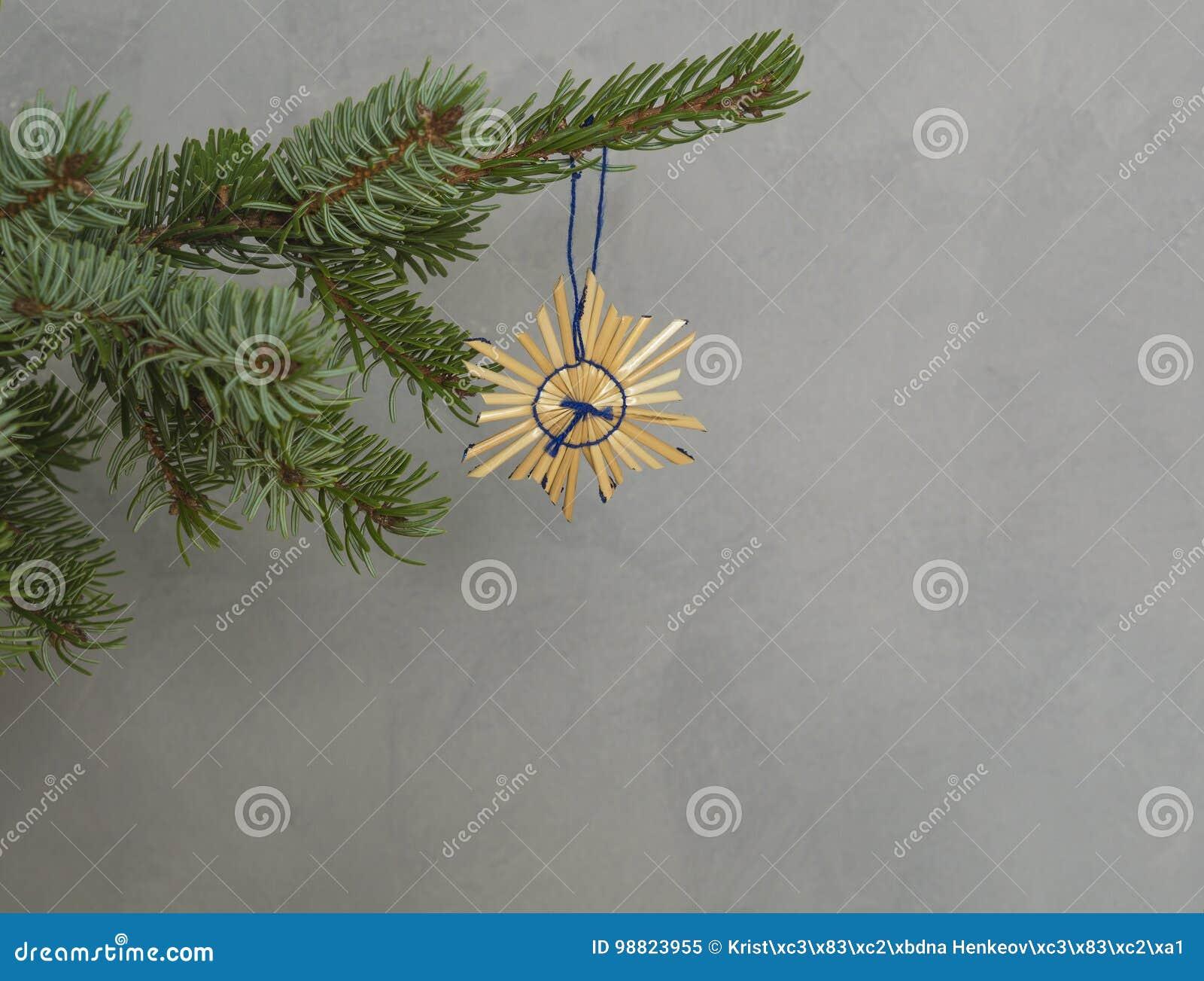 Branche D Arbre Sapin De Noel Étoile de paille de décoration de noël sur la branche d