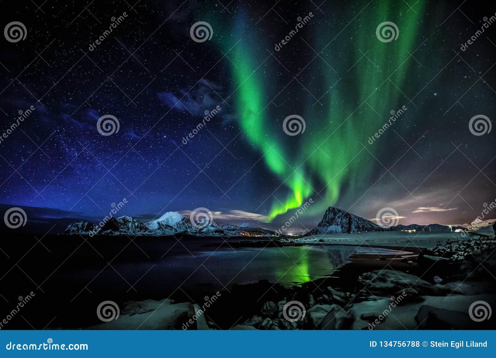 Étoile polaire de l aurore Madame verte