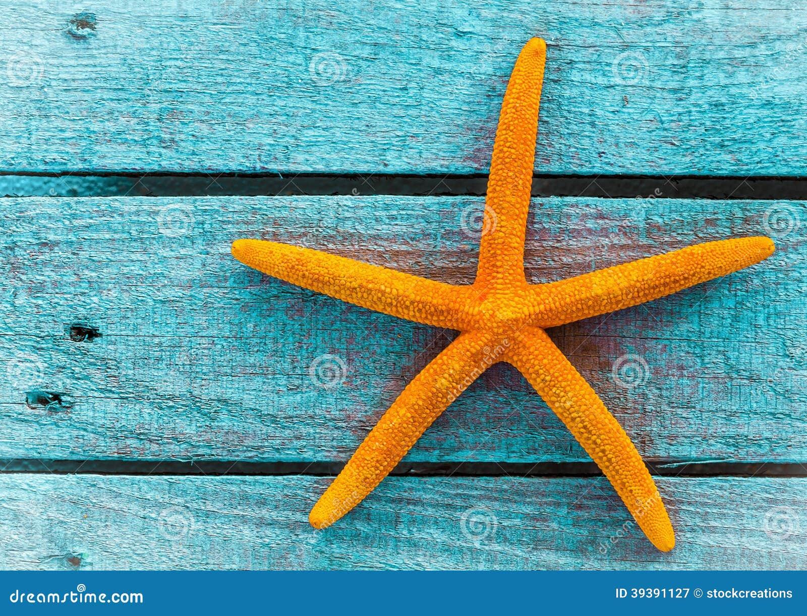 Étoiles de mer ou étoile de mer oranges sur les conseils en bois bleus