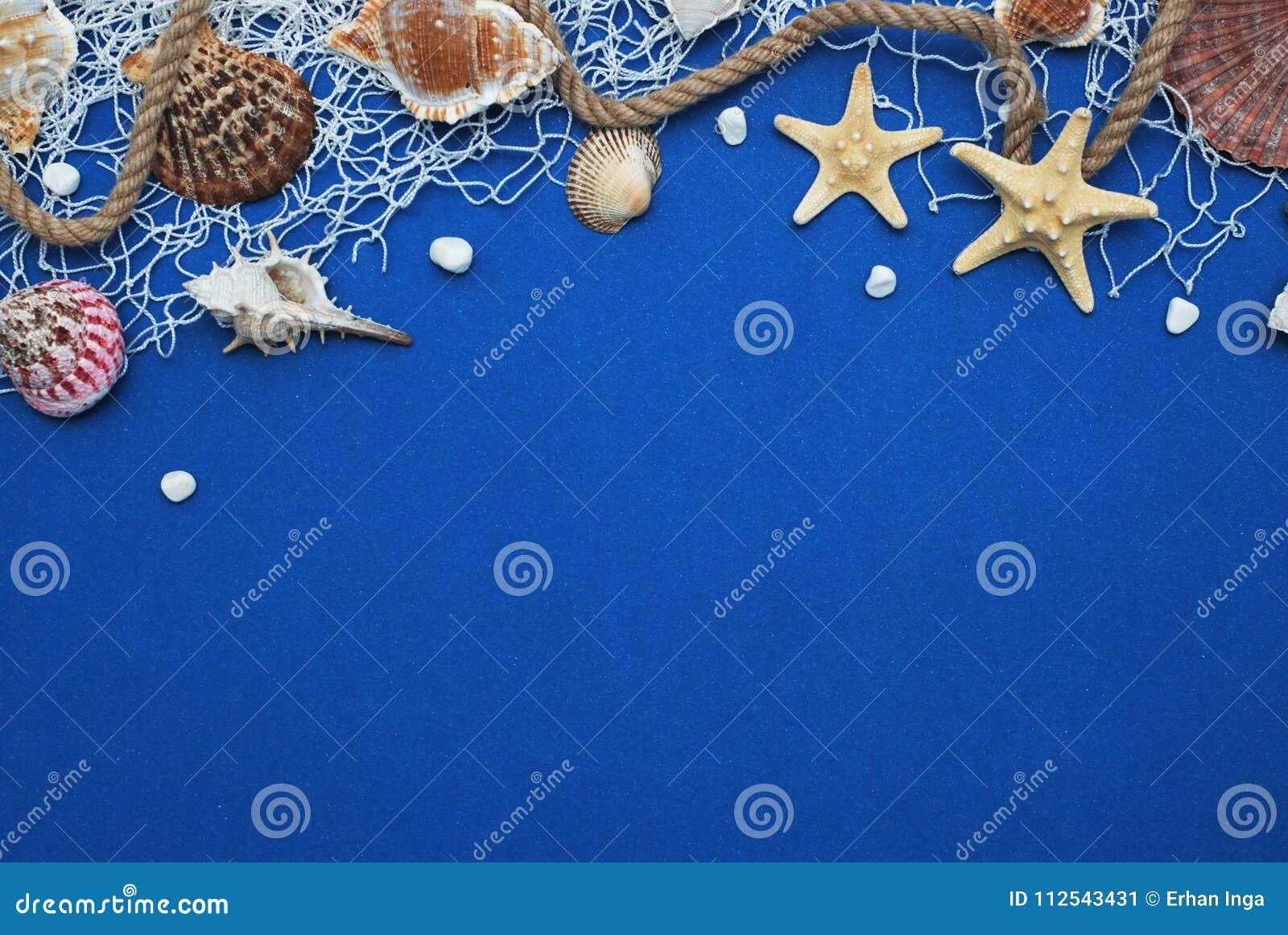 Étoiles de mer, Shell, pierres, corde et filet sur un fond bleu avec l espace de copie Été Holliday Nautique, concept de Marrine