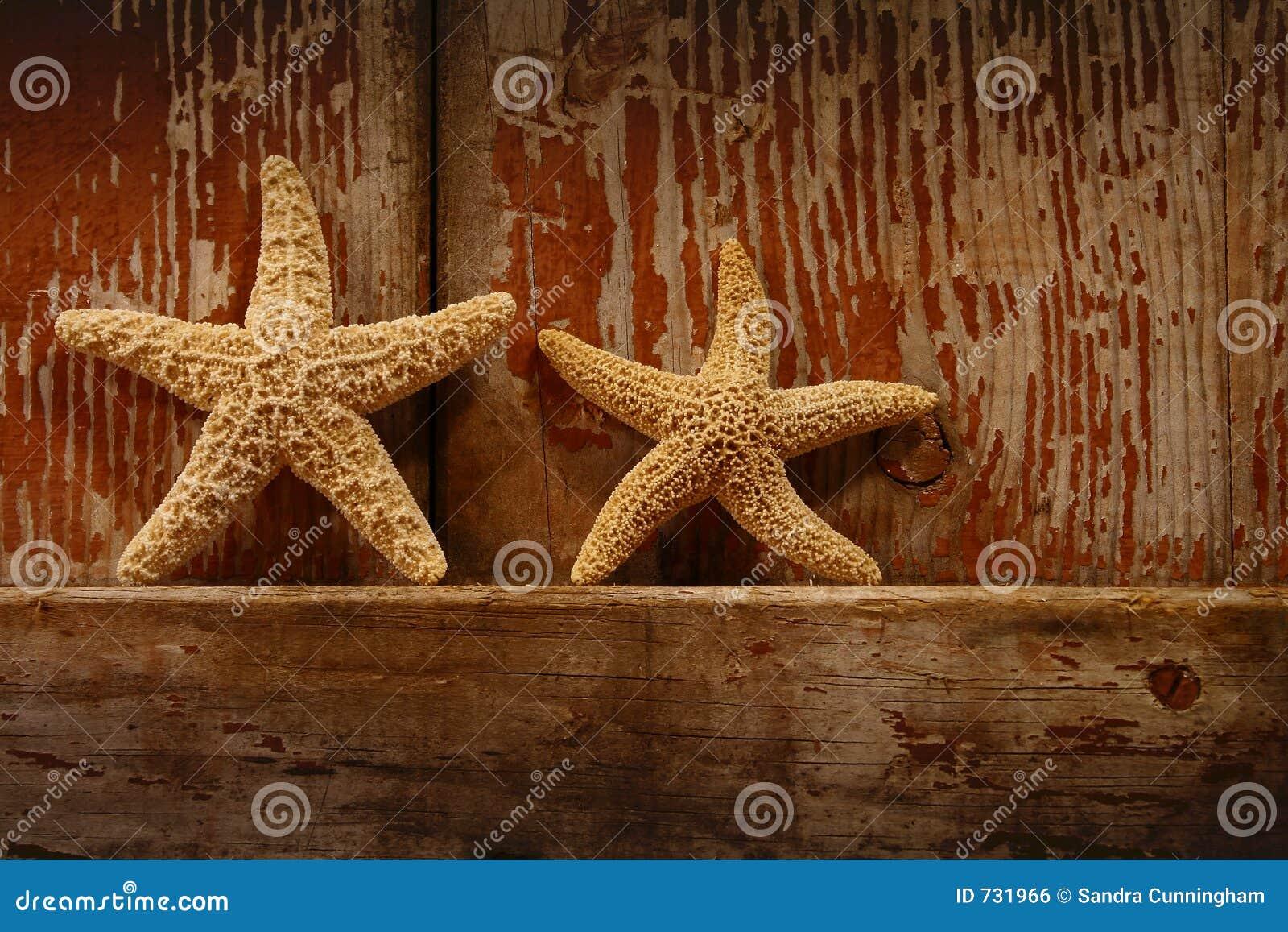 Étoiles de mer sur la trappe de grange