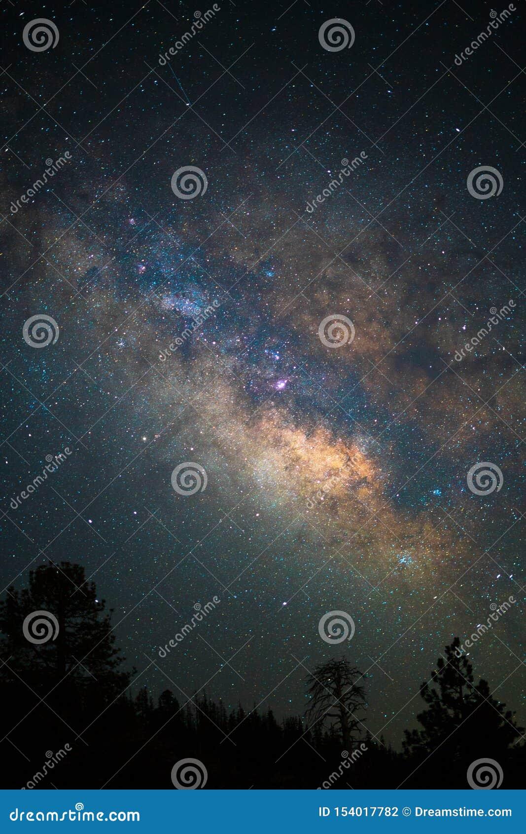Étoiles rêveuses de ciel de nuit de Yosemite de photographie étoilée d astro
