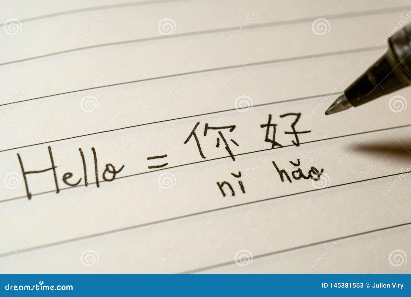 Étudiant de langue chinoise de débutant écrivant le mot Nihao de bonjour en caractères chinois et le pinyin sur un carnet