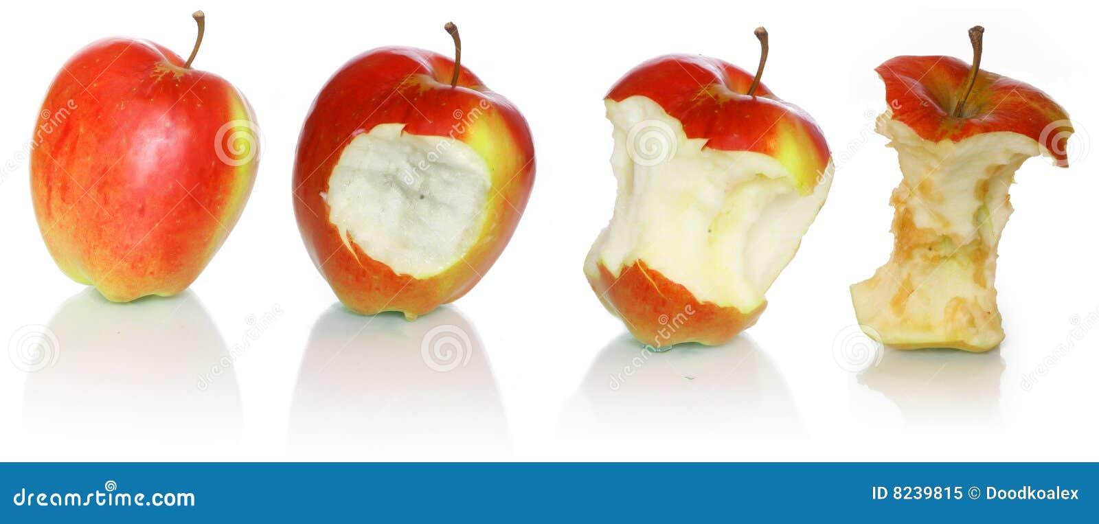 évolution de pomme