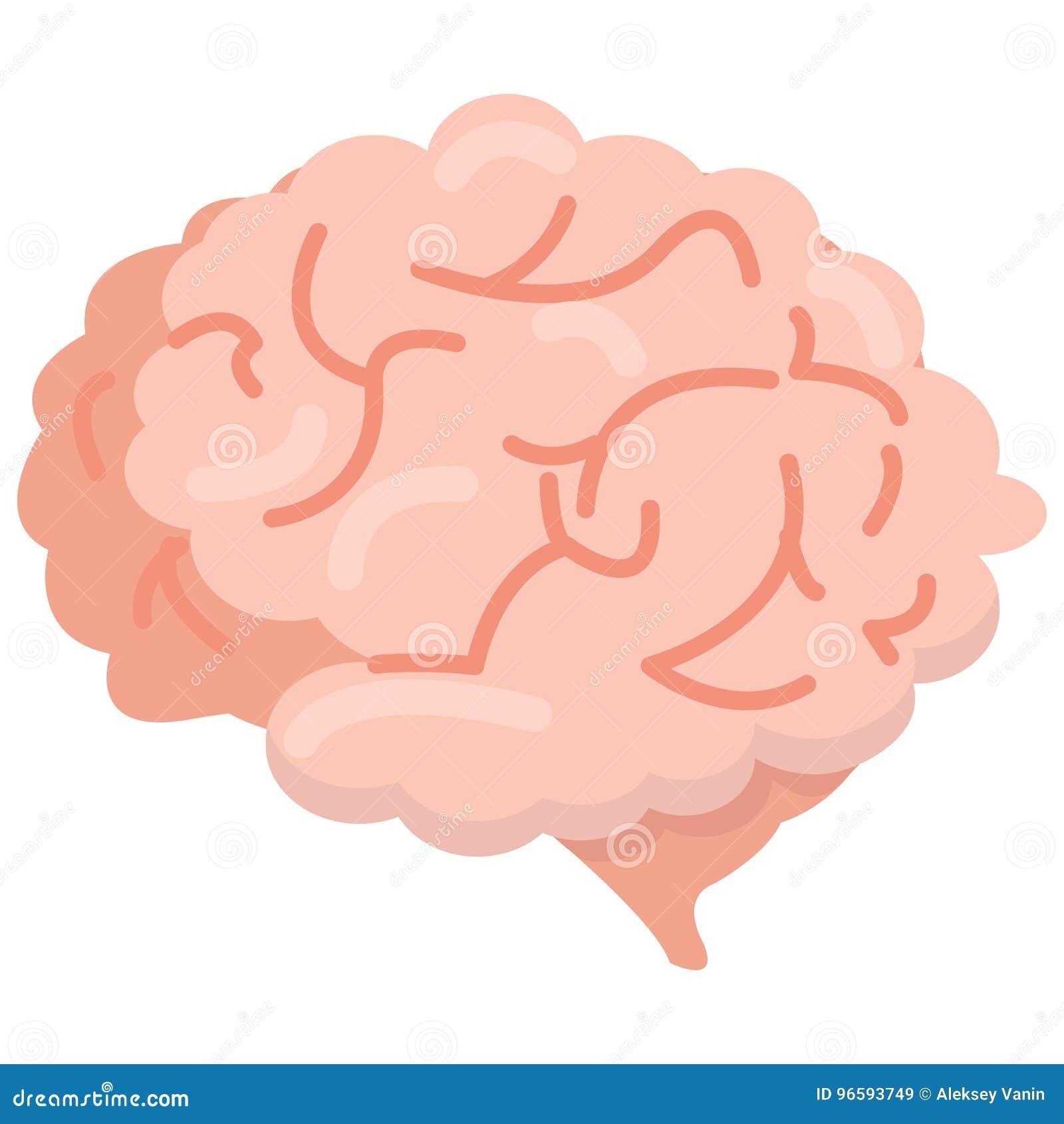 Ícone do órgão do cérebro humano, ilustração do vetor