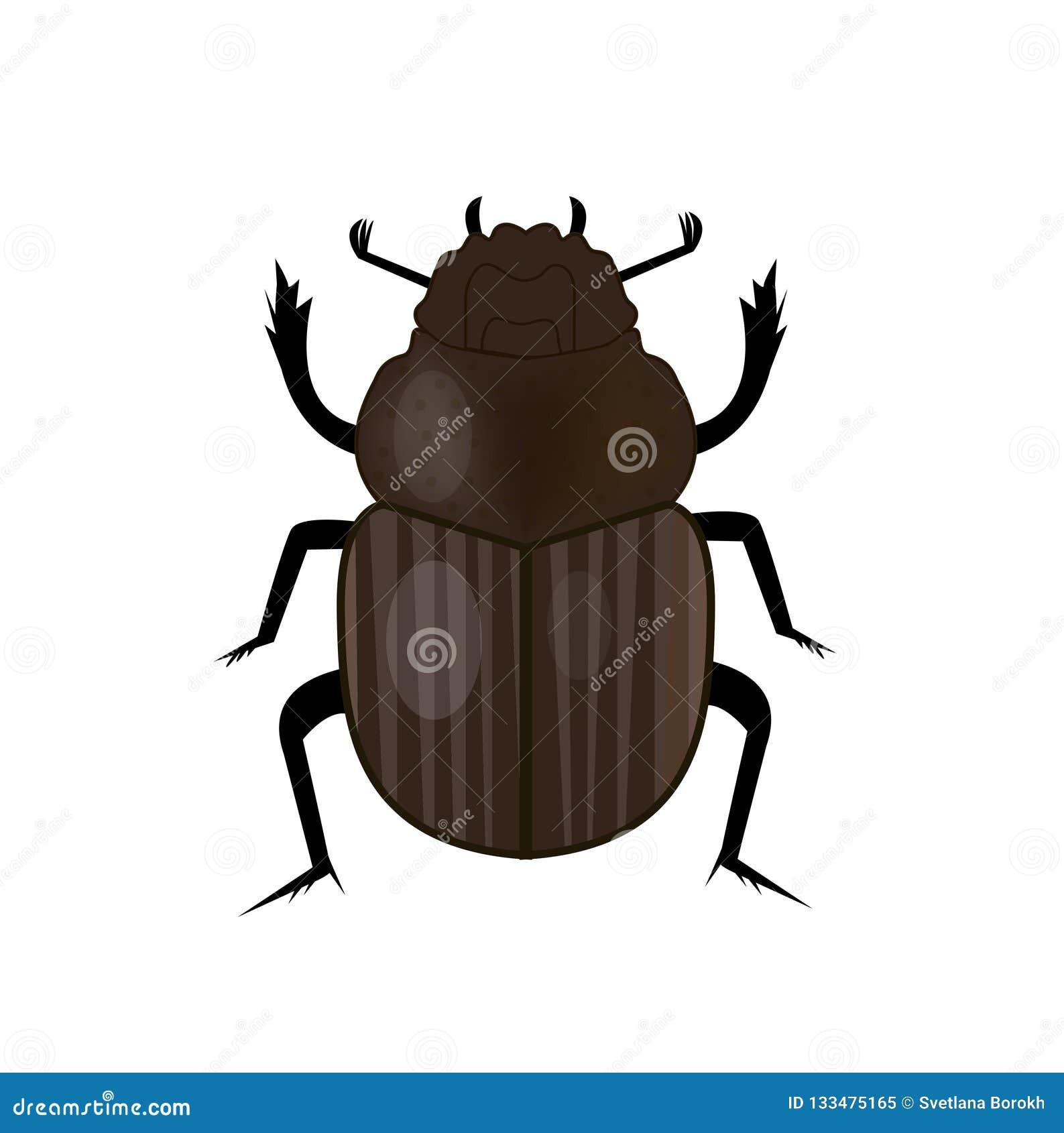 Ícone do inseto do besouro do escaravelho, estilo liso Símbolo de Egipto antigo Isolado no fundo branco Ilustração do vetor