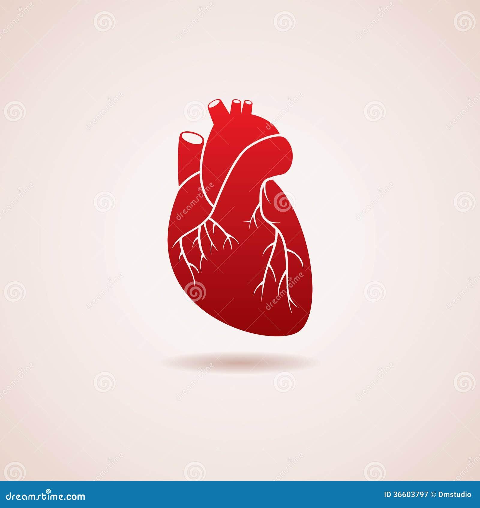 Ícone humano do coração