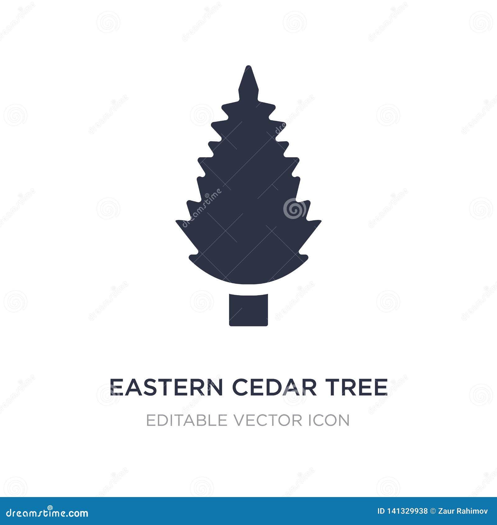 ícone oriental da árvore de cedro no fundo branco Ilustração simples do elemento do conceito da natureza