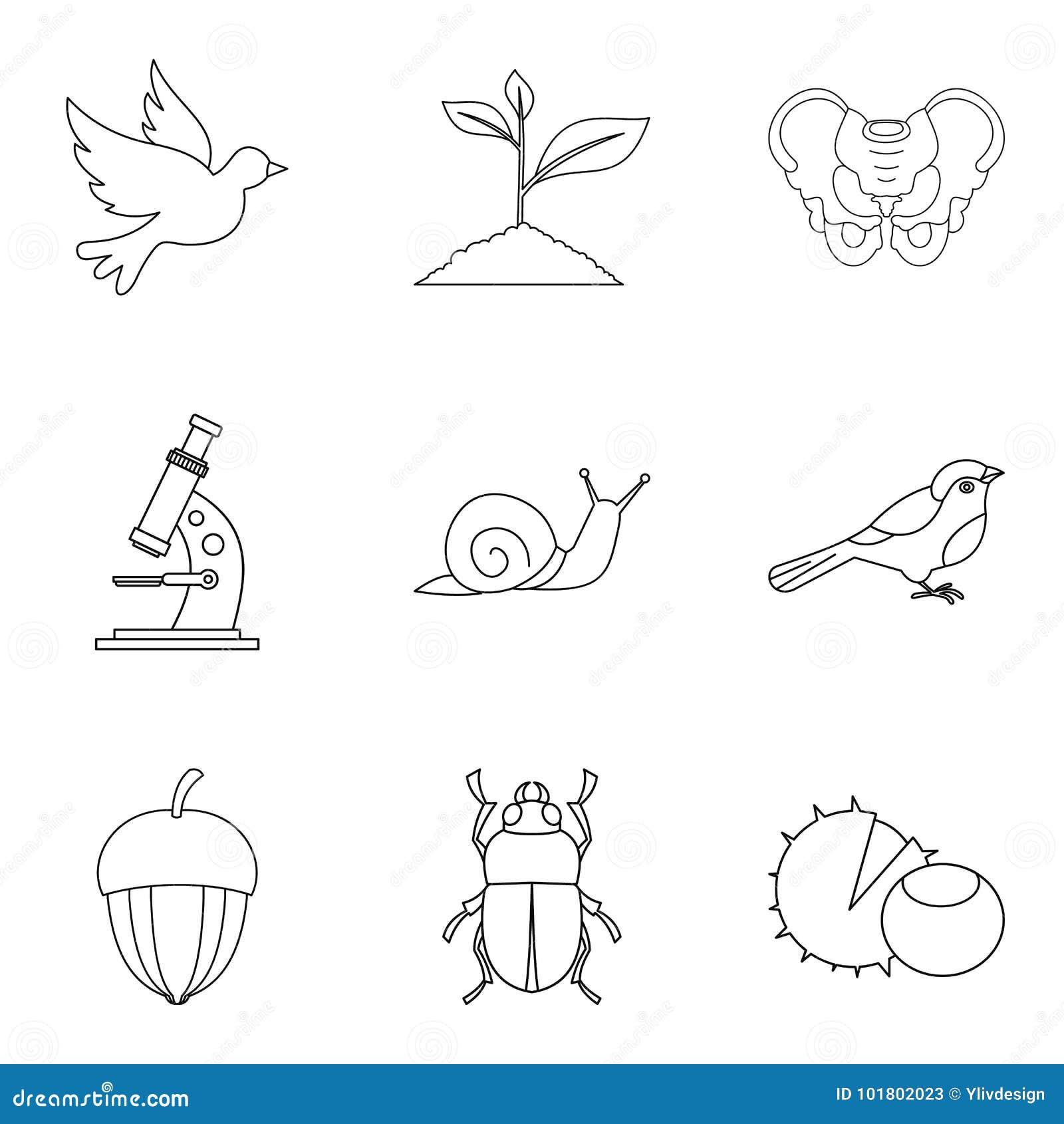 Ícones ajustados, estilo do inseto do esboço