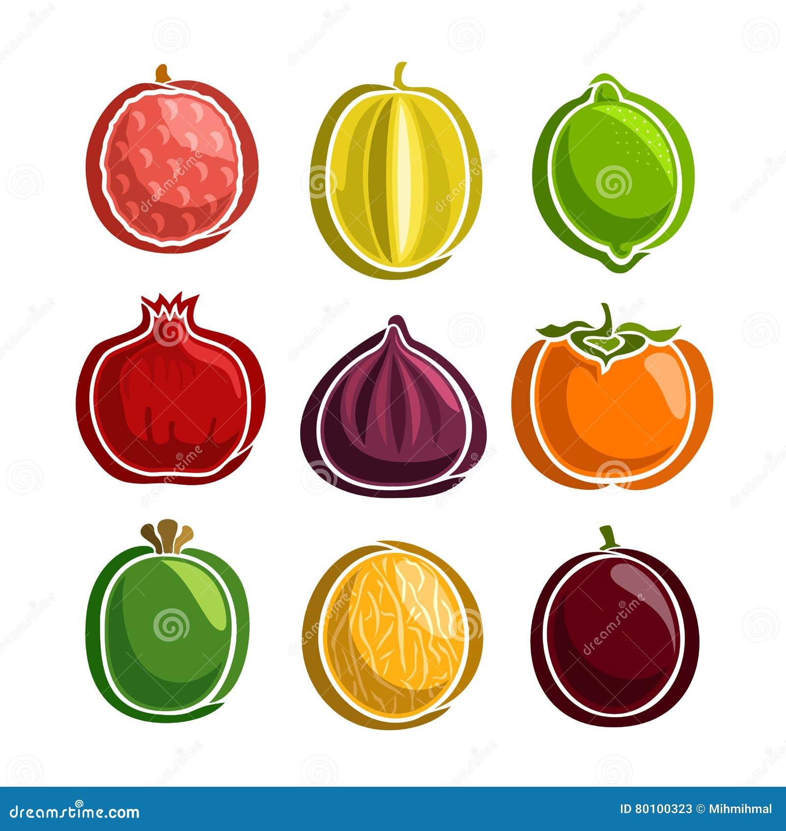 Ícones coloridos ajustados dos frutos do vetor