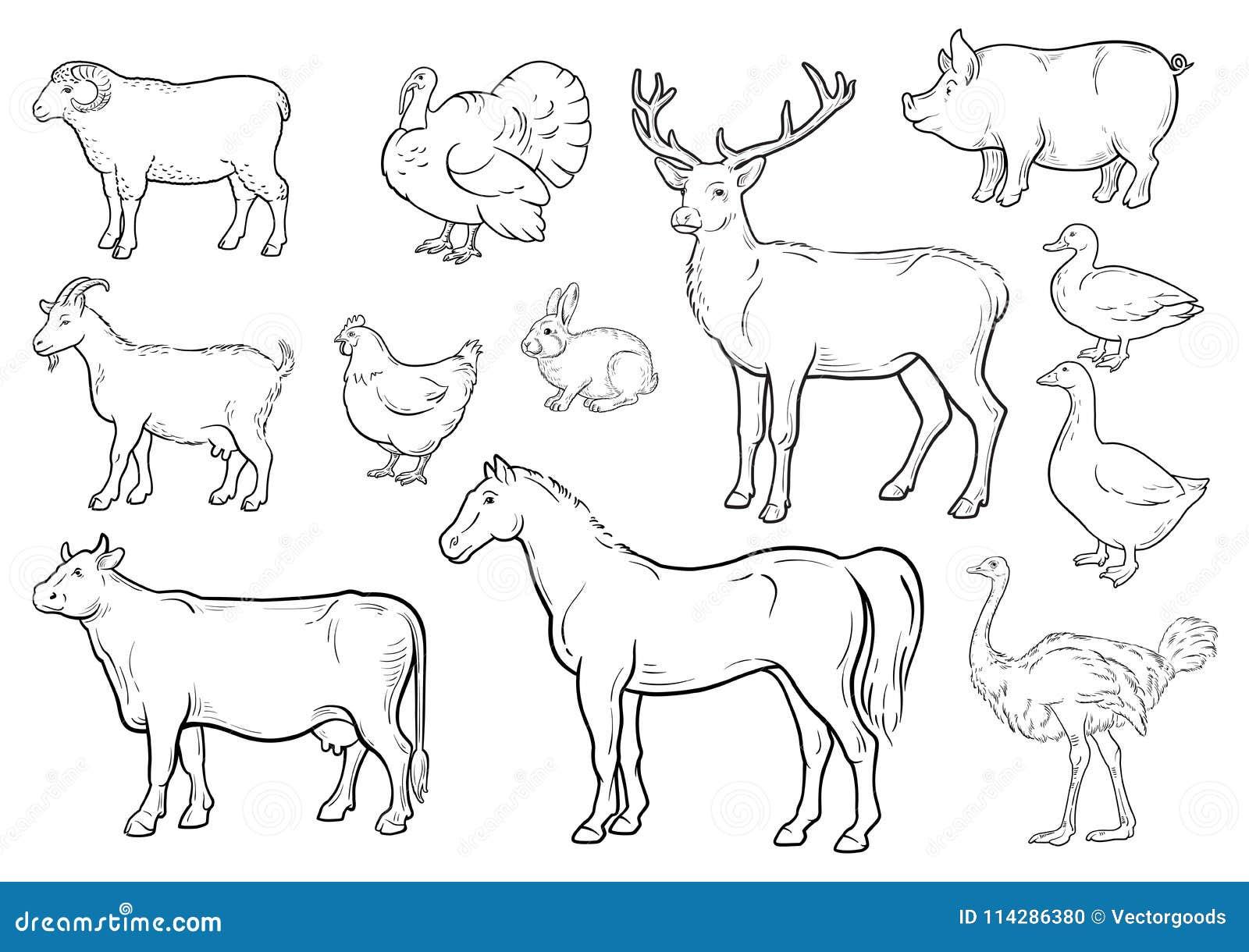 Ícones dos animais de exploração agrícola ajustados Coleção das etiquetas com o bonito tal como a vaca Turquia do cavalo do ganso