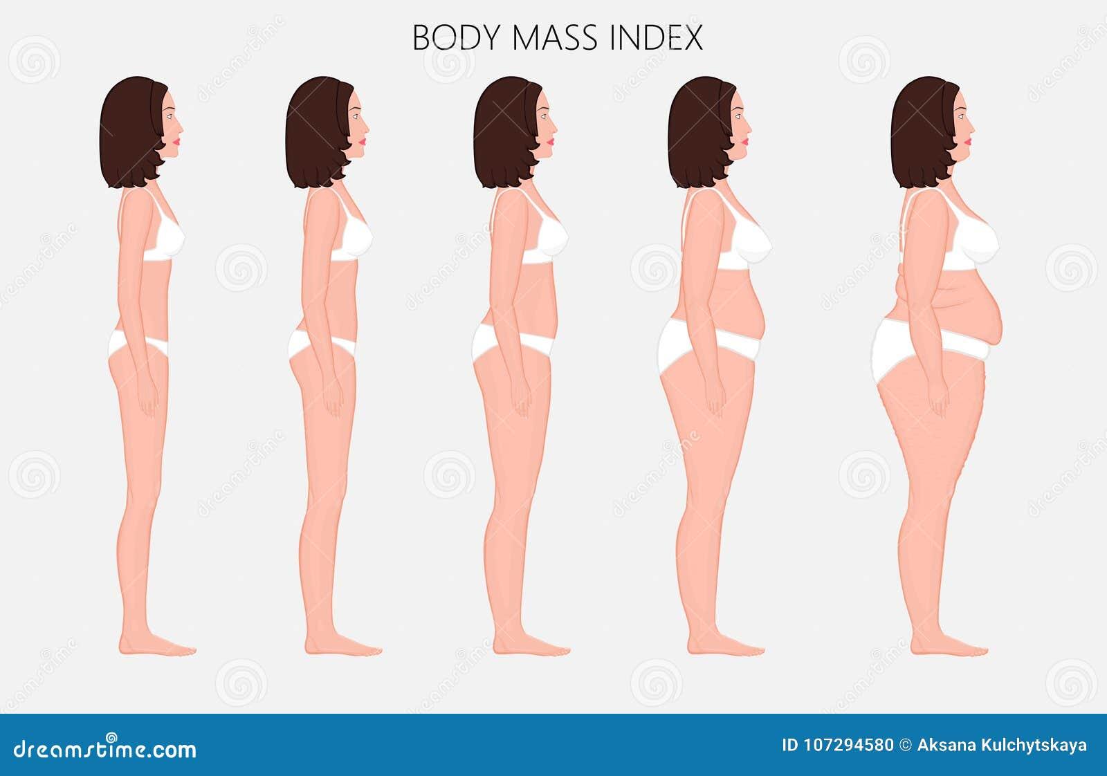 Índice total anatomy_Body del cuerpo humano de mujeres europeas de la falta o