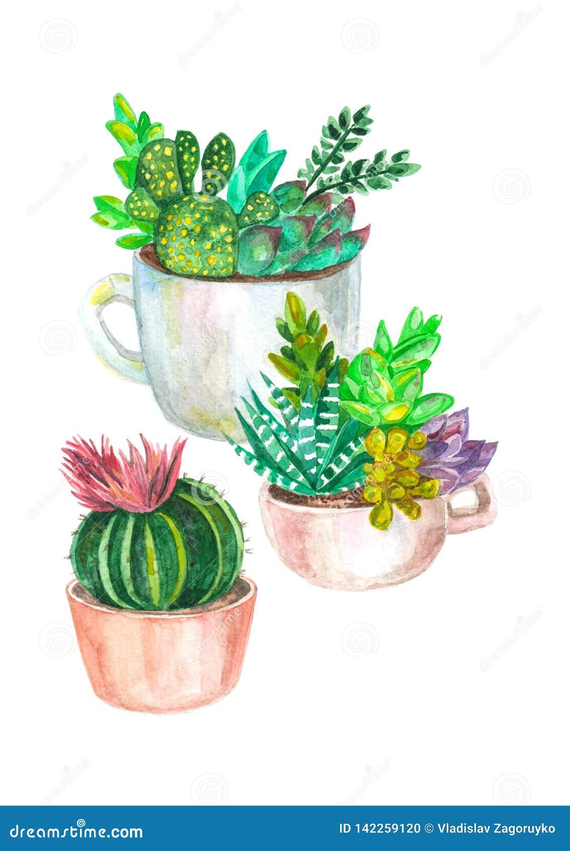 άνευ ραφής σχέδιο watercolor των κάκτων και succulents αρχαίο watercolor εγγράφου ανασκόπησης σκοτεινό κίτρινο