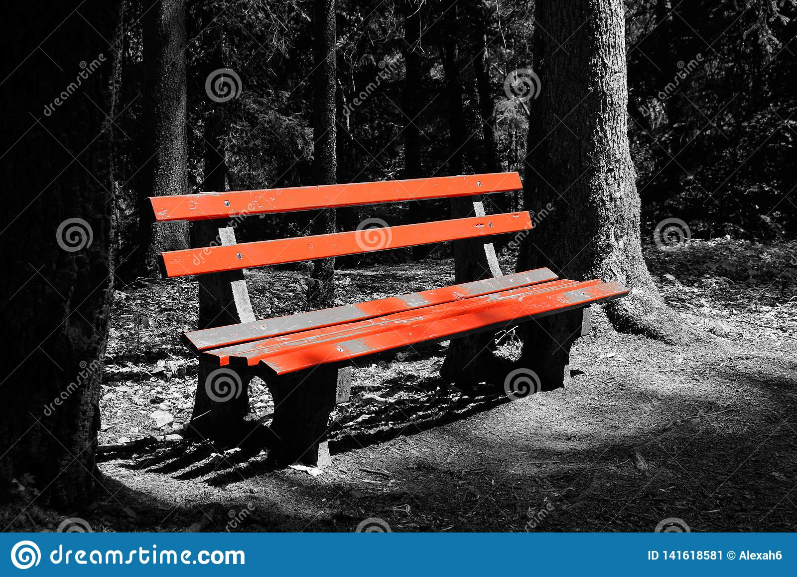 Άσπρος και μαύρος κόκκινος πάγκος στο ξύλινο τοπίο