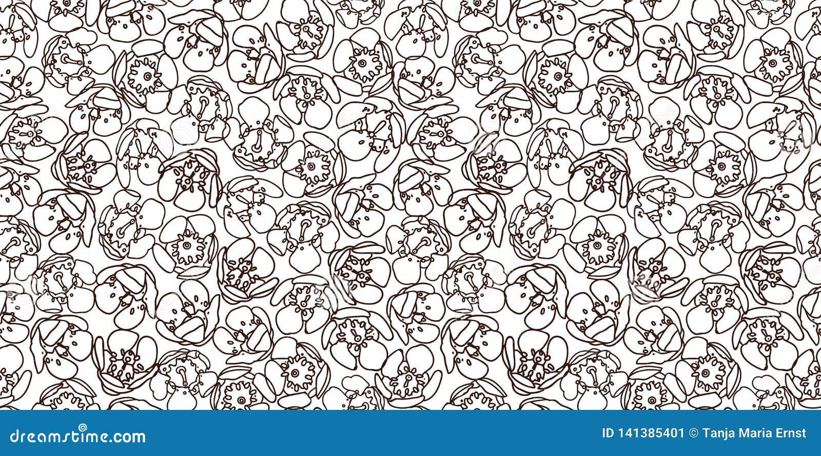 Άσπρο σχέδιο με το μαύρο άνθος