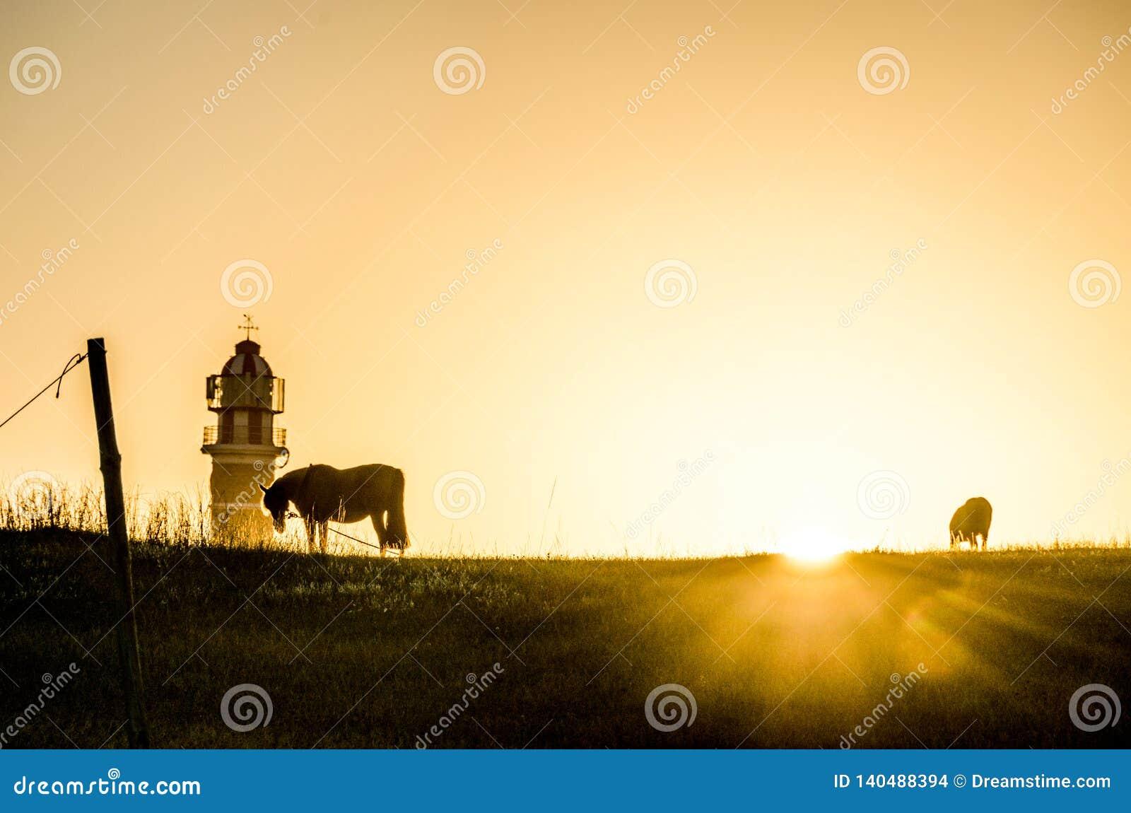 Ανατολή με το άλογο και το φάρο