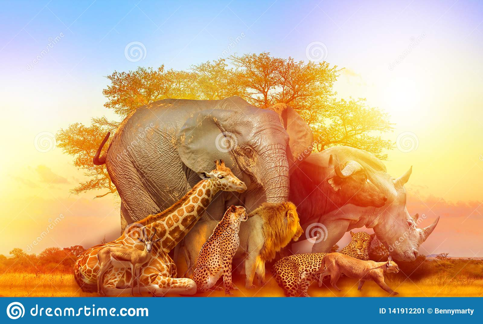 Αφρικανικό ηλιοβασίλεμα κολάζ ζώων