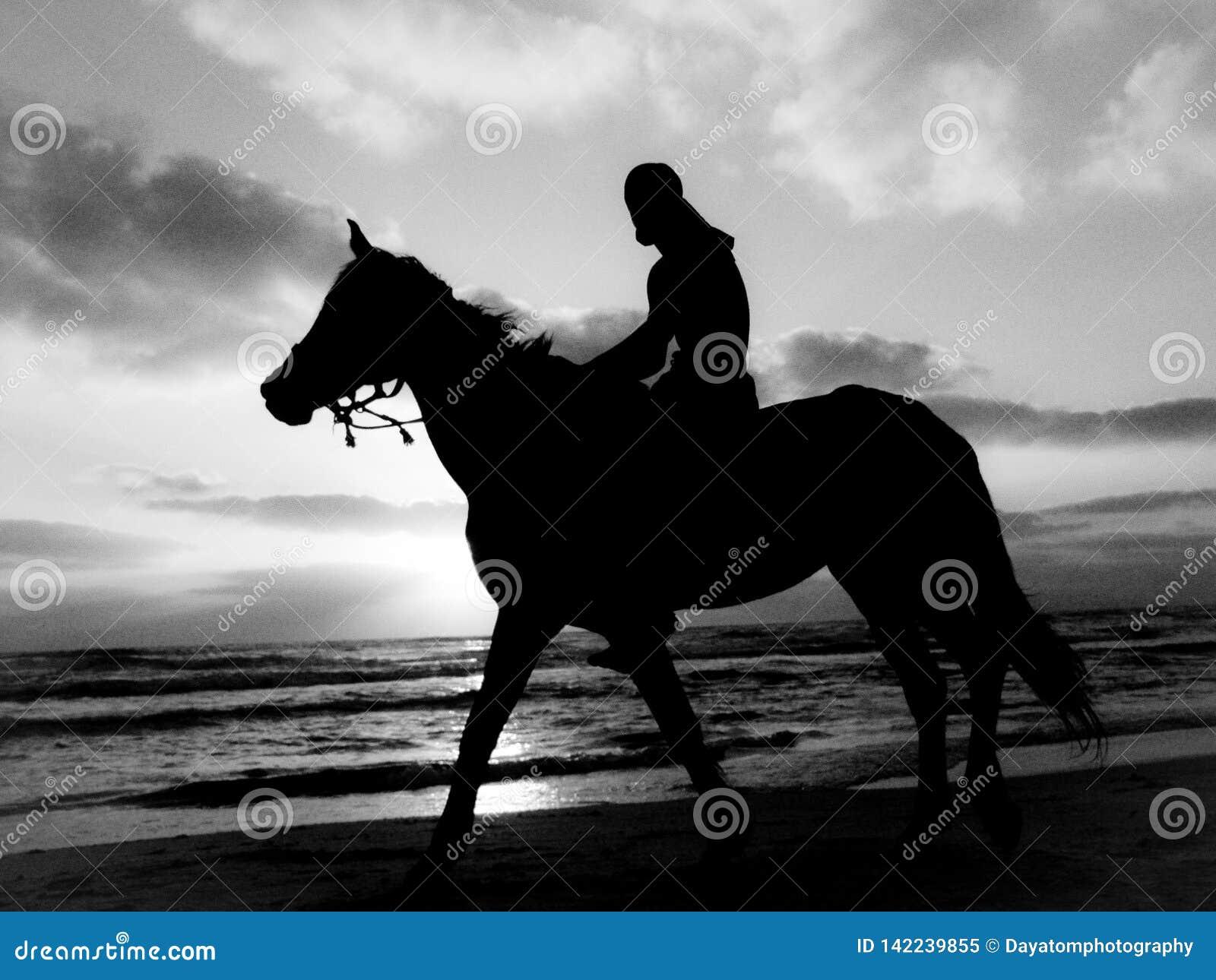 Γραπτή σκιαγραφία ενός ατόμου που οδηγά ένα άλογο σε μια αμμώδη παραλία κάτω από έναν νεφελώδη ουρανό κατά τη διάρκεια του ηλιοβα