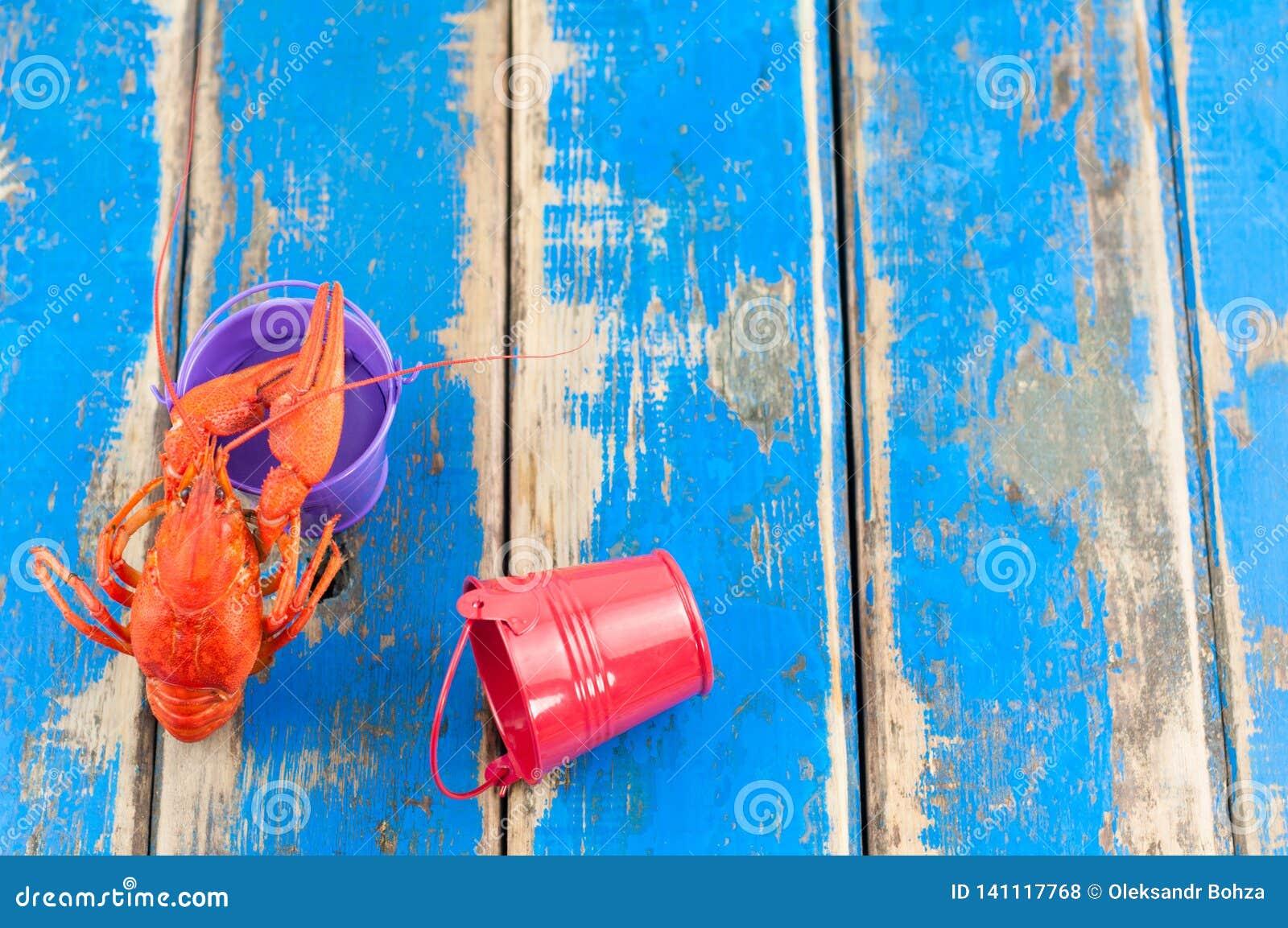 Ενιαίοι ολόκληροι κόκκινοι βρασμένοι αστακοί κοντά στον κενό ιώδη κάδο μετάλλων εκτός από τον κόκκινο ξαπλωμένο κάδο