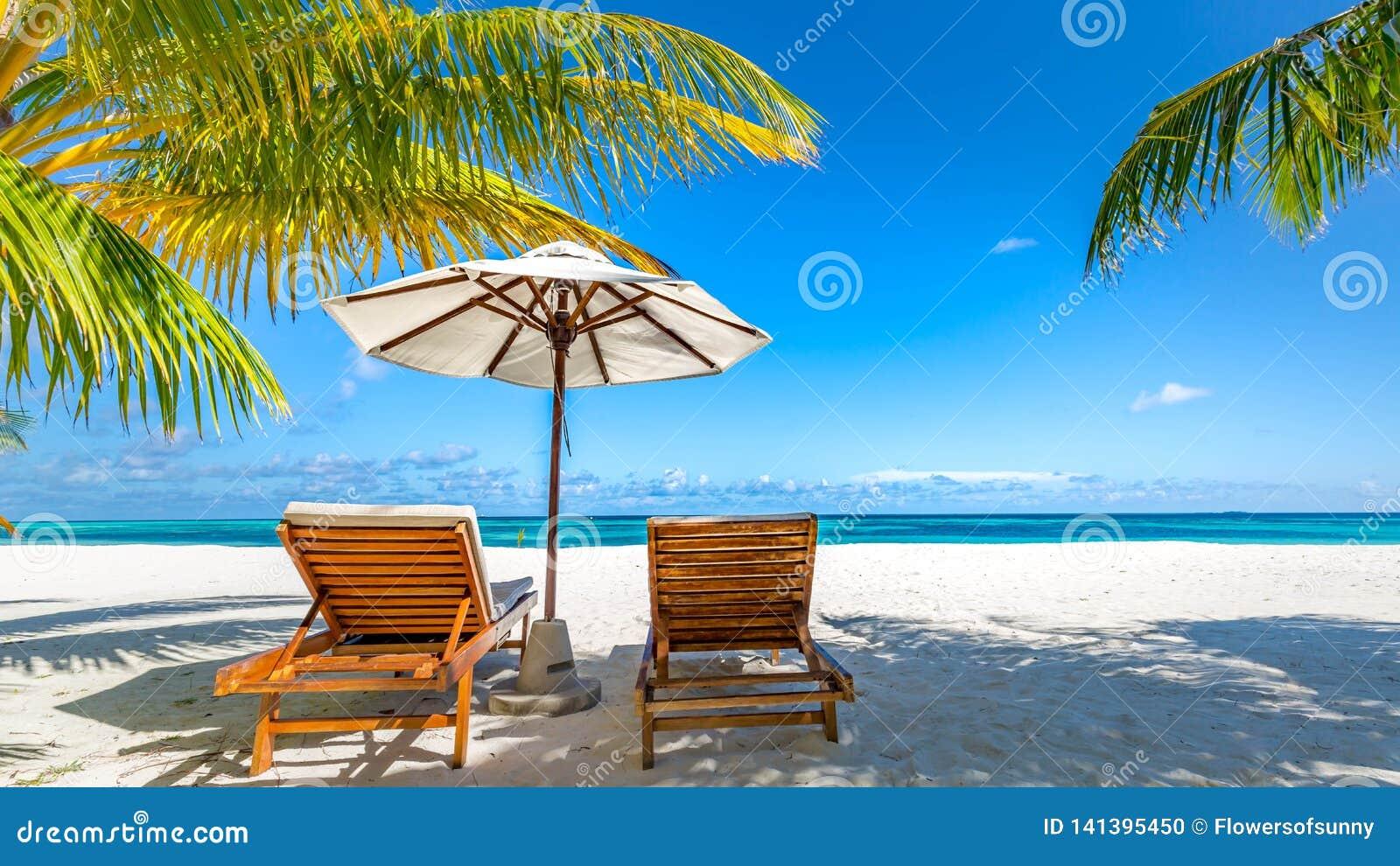 Εξωτικός προορισμός, αργόσχολοι και ομπρέλα ταξιδιού κάτω από το φύλλο φοινικών Πολυτελές τροπικό τοπίο παραλιών
