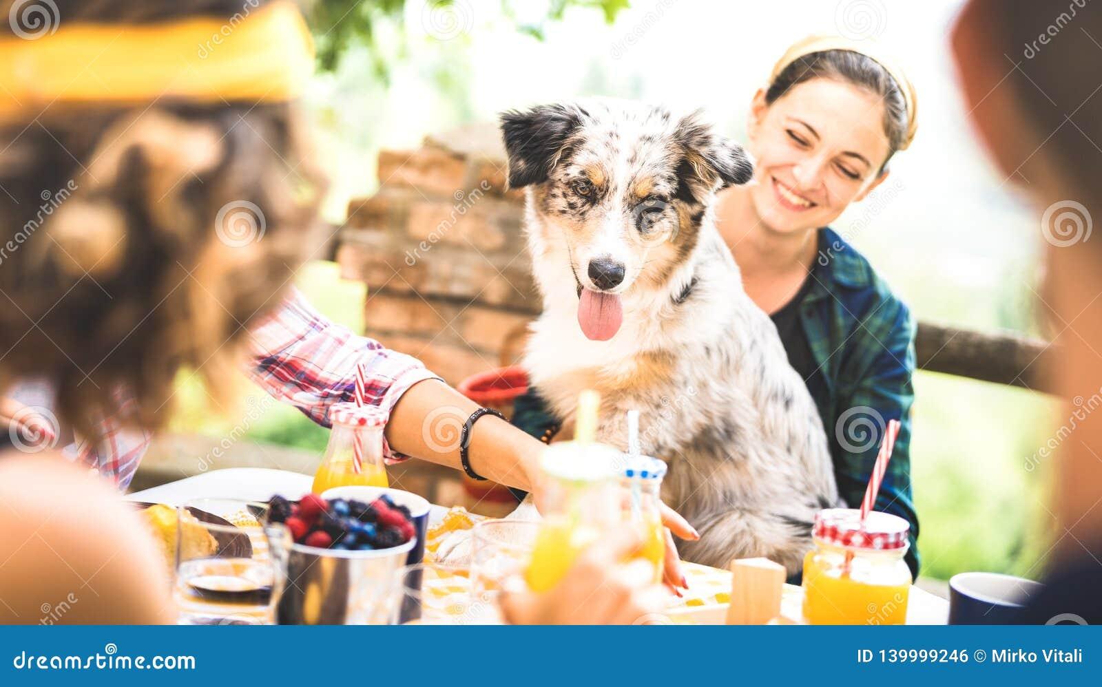 Ευτυχείς φίλοι που έχουν το υγιές πρόγευμα PIC NIC στο αγροτικό σπίτι επαρχίας - millennials νέων με το χαριτωμένο σκυλί που έχει