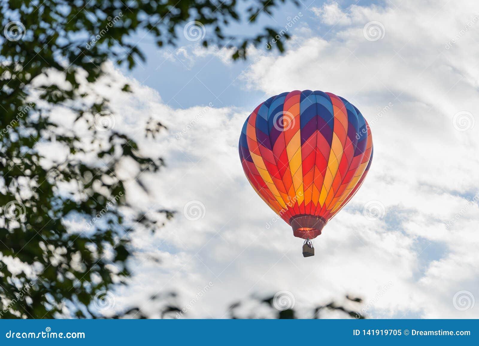 Ζωηρόχρωμο μπαλόνι ζεστού αέρα που πλαισιώνεται από τα φύλλα