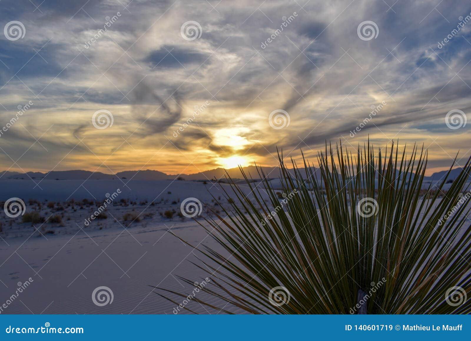 Ηλιοβασίλεμα στην άσπρη έρημο άμμων