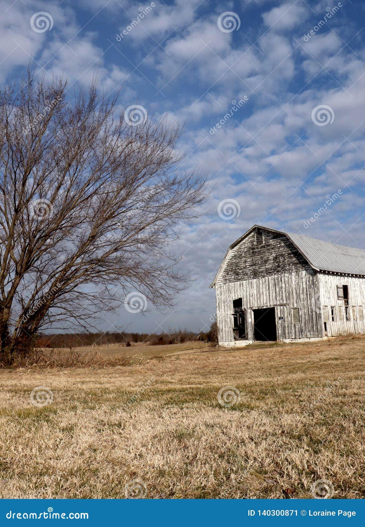Η σιταποθήκη και το ενιαίο δέντρο μαζί με στερεωμένο το σύννεφο ουρανό και την κοιμισμένη χλόη κάνουν αυτό μια αναγκάζοντας χειμε
