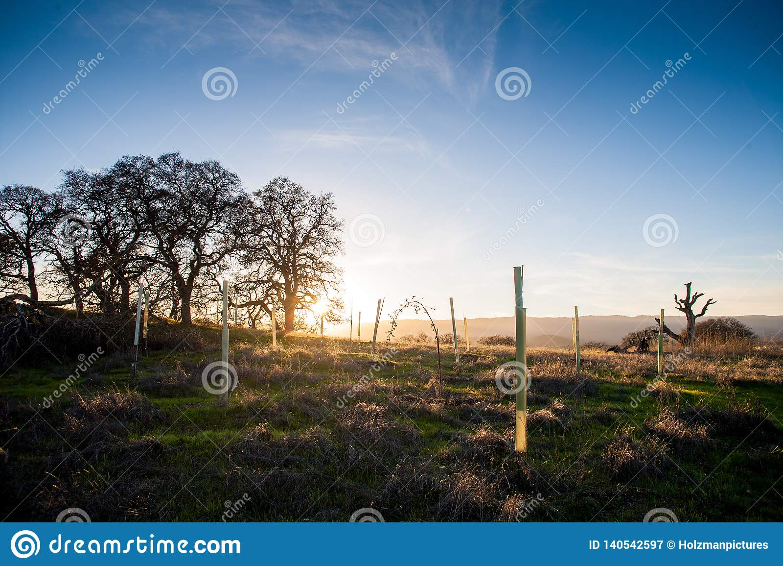 Η χρυσή ώρα, ο ήλιος θέτει στην επαρχία κοντά στο Στάνφορντ