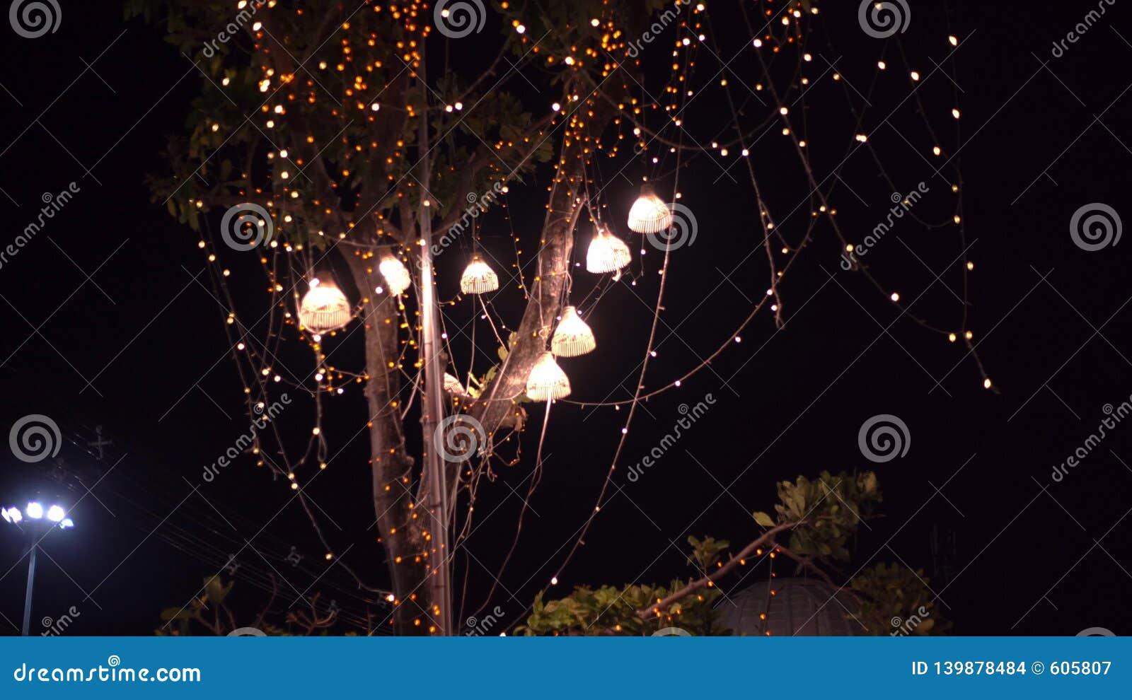Λάμπες φωτός υποβάθρου υπαίθριες σε ένα καλώδιο ενάντια στο δάσος σούρουπου, έννοια διακοπών
