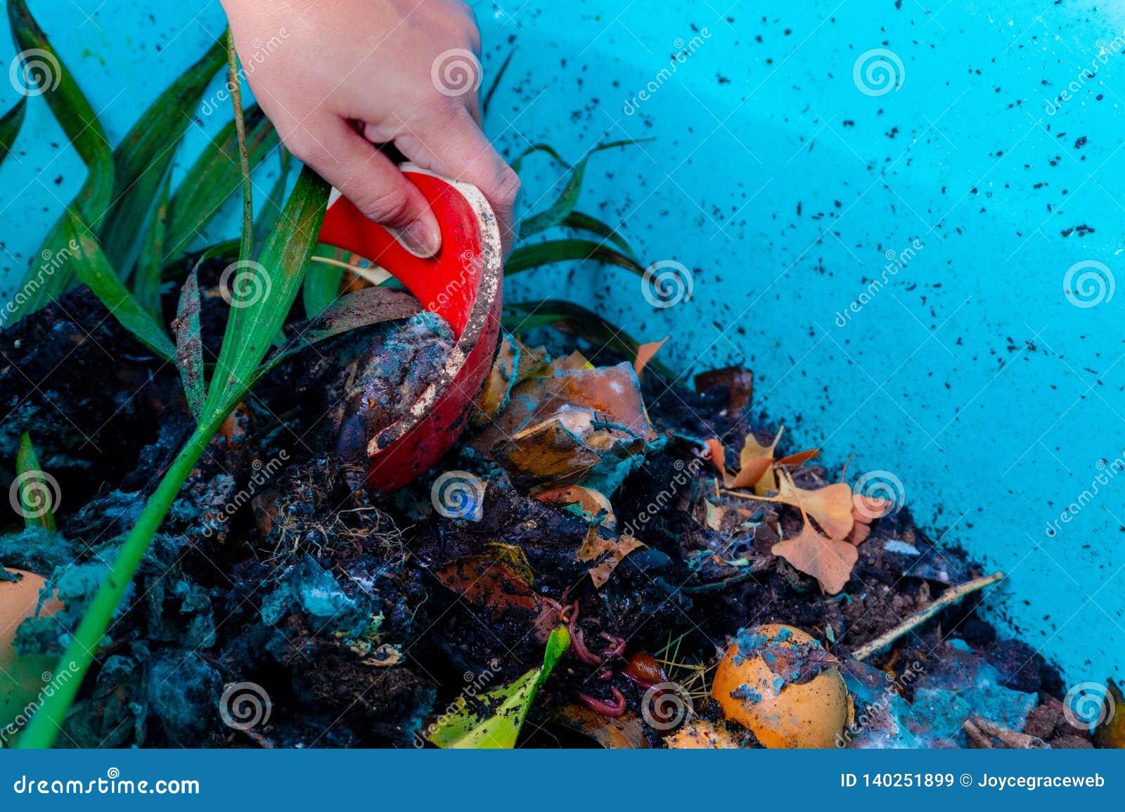 Λίπανση σε ένα πλαστικό δοχείο που χρησιμοποιεί στο σπίτι τα απορρίματα σκουληκιών αγροκτημάτων και κουζινών