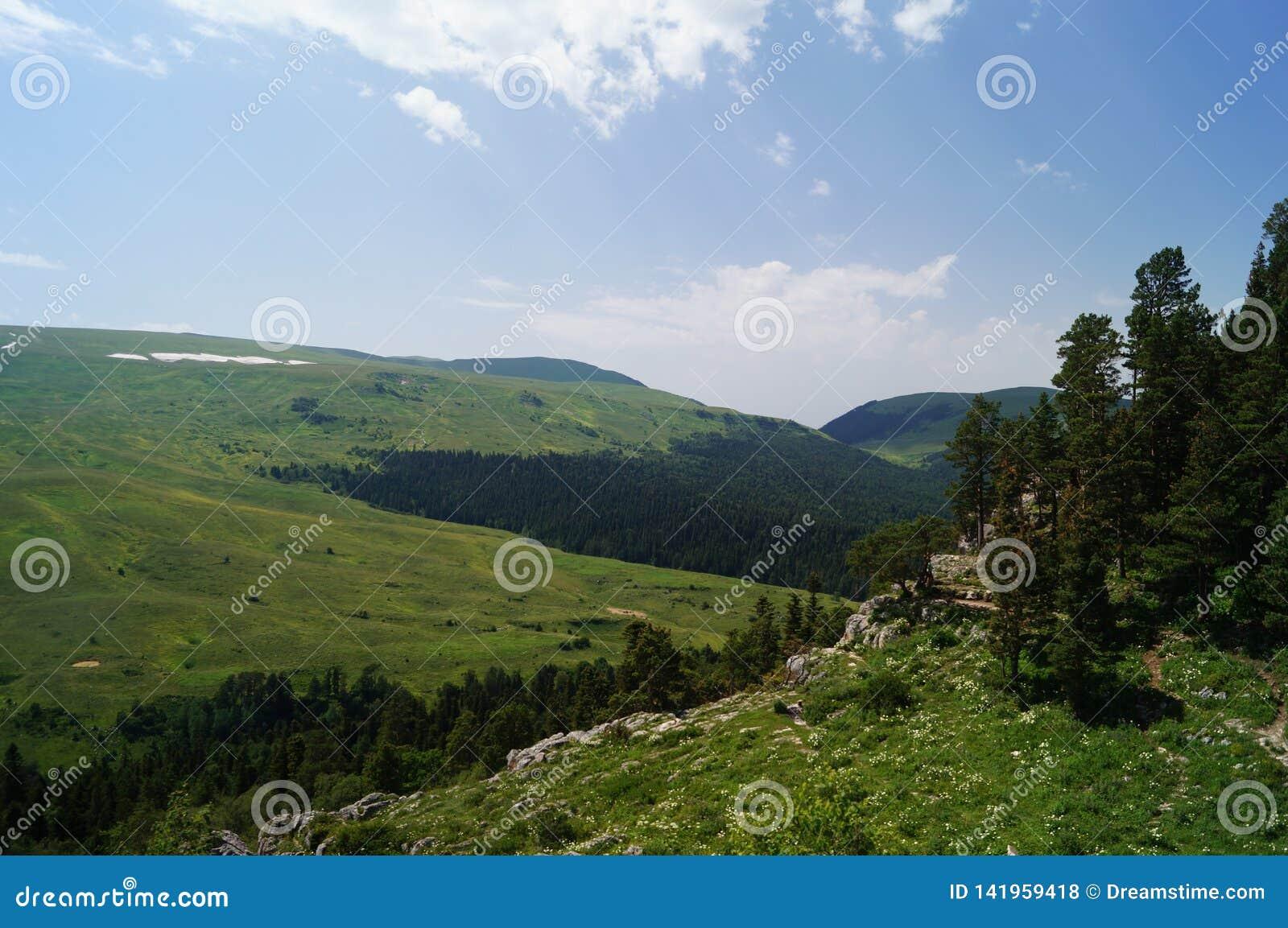 λόφοι