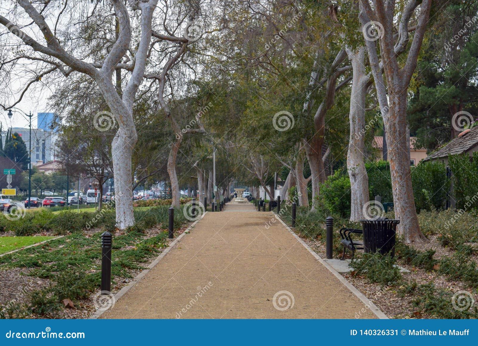 Οδοί του Μπέβερλι Χιλς, Καλιφόρνια