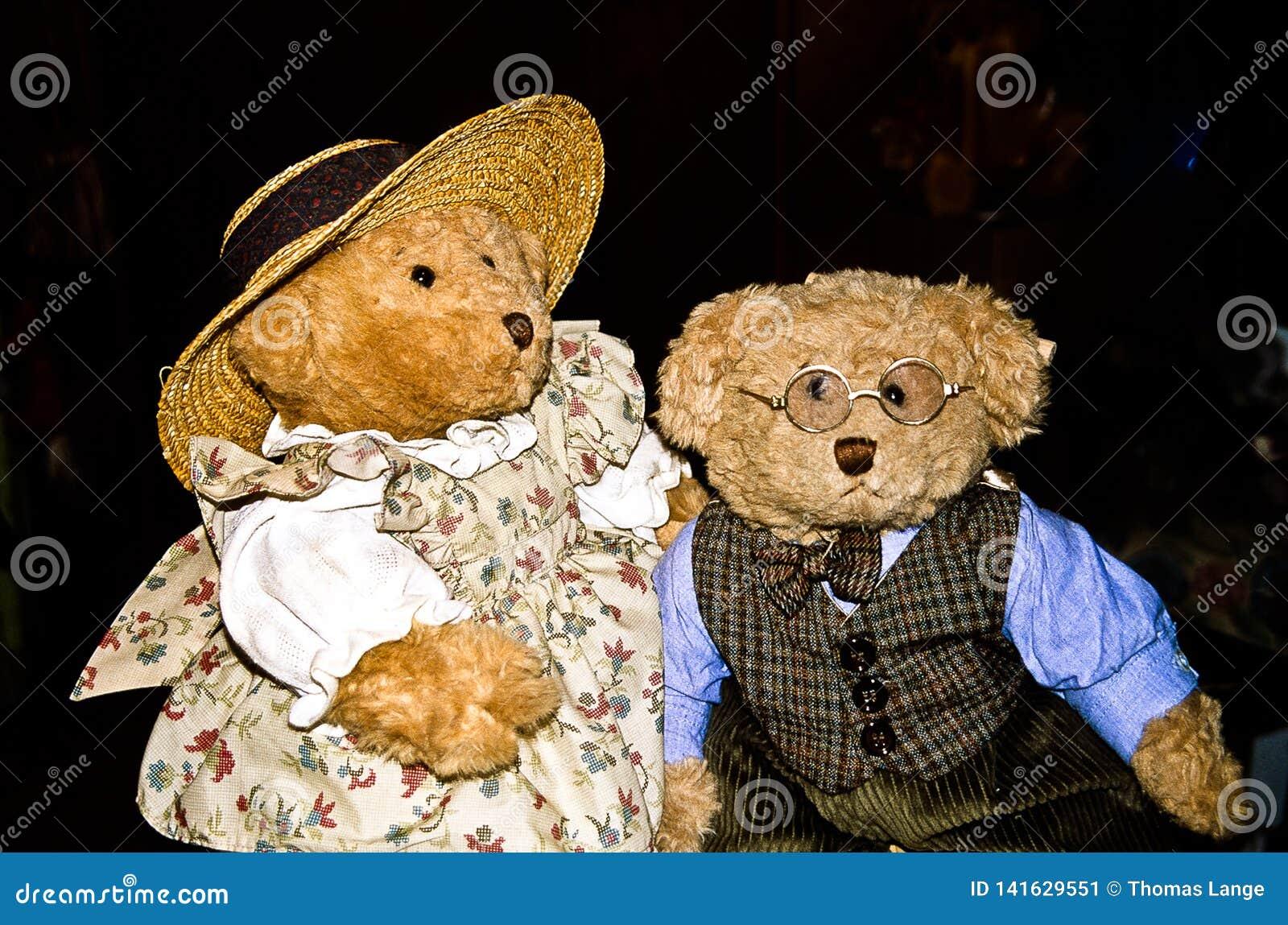 Ο καθηγητής και η σύζυγός του - ένα ζευγάρι των teddy αρκούδων