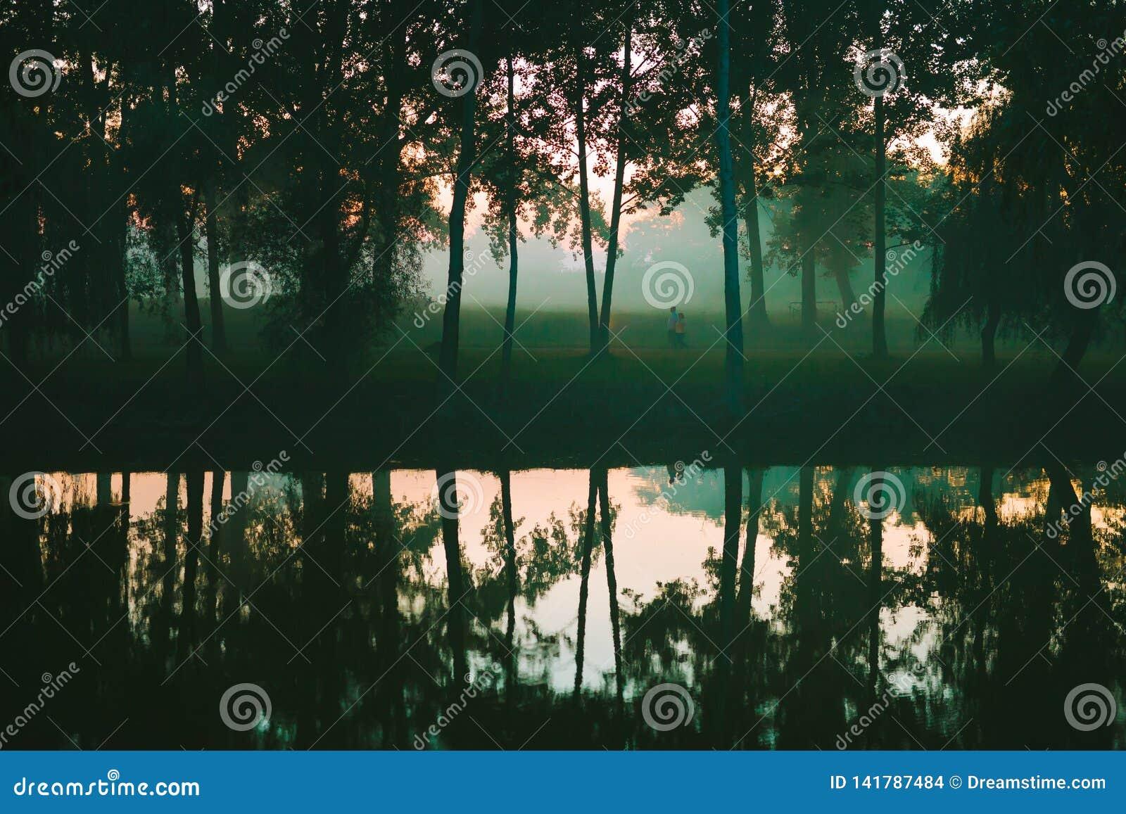 Δασικές αντανακλάσεις στη λίμνη