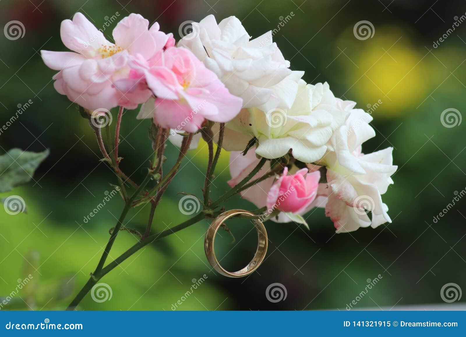 Δαχτυλίδι και τριαντάφυλλα