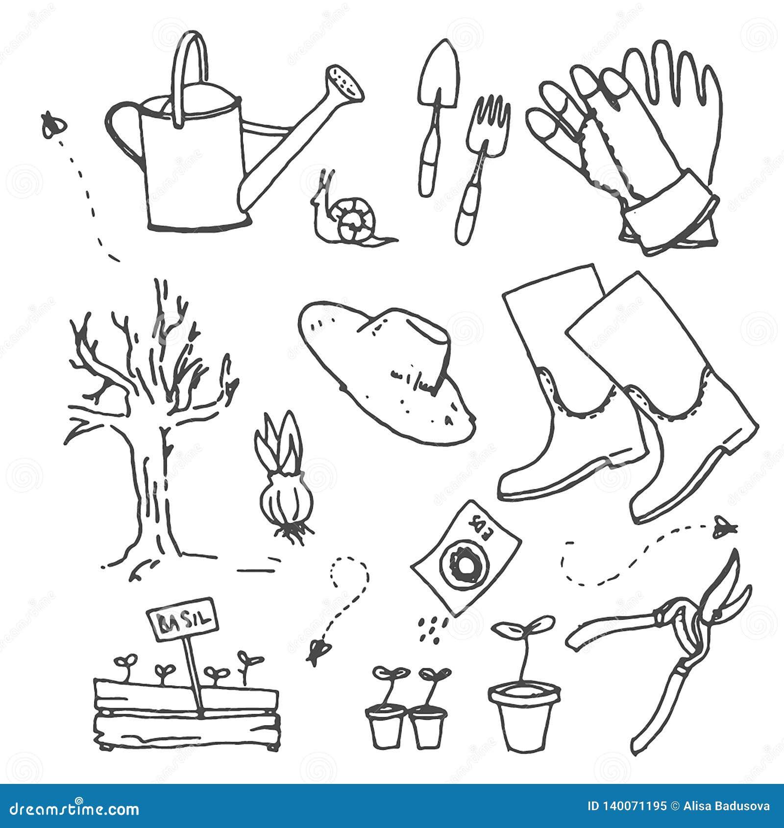 Διανυσματικό συρμένο χέρι σκίτσο της απεικόνισης κηπουρικής στο άσπρο υπόβαθρο