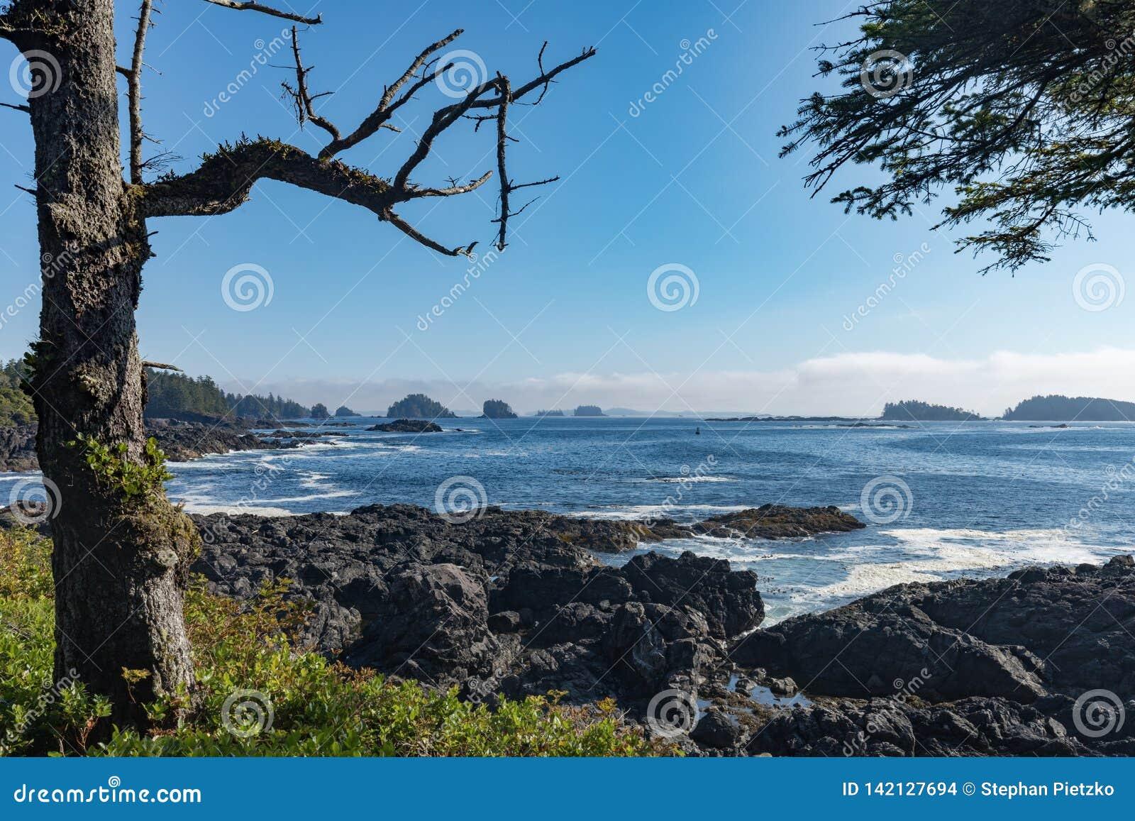 Δυτικό Νησί Βανκούβερ Π.Χ. Καναδάς Pacific Coast