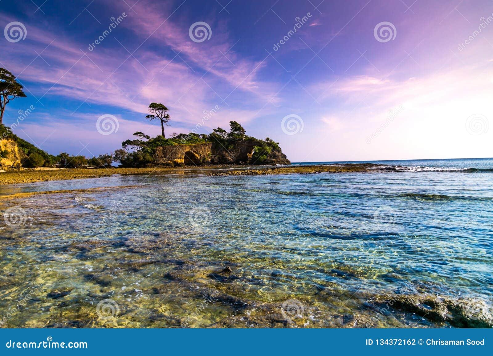 Île Andaman de Neills