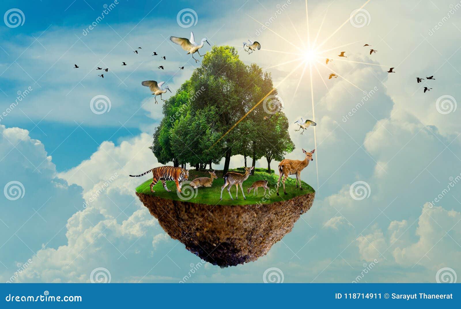 Île d oiseau de cerfs communs de tigre de faune d arbre forestier flottant pendant le jour de terre de jour de conservation du mo