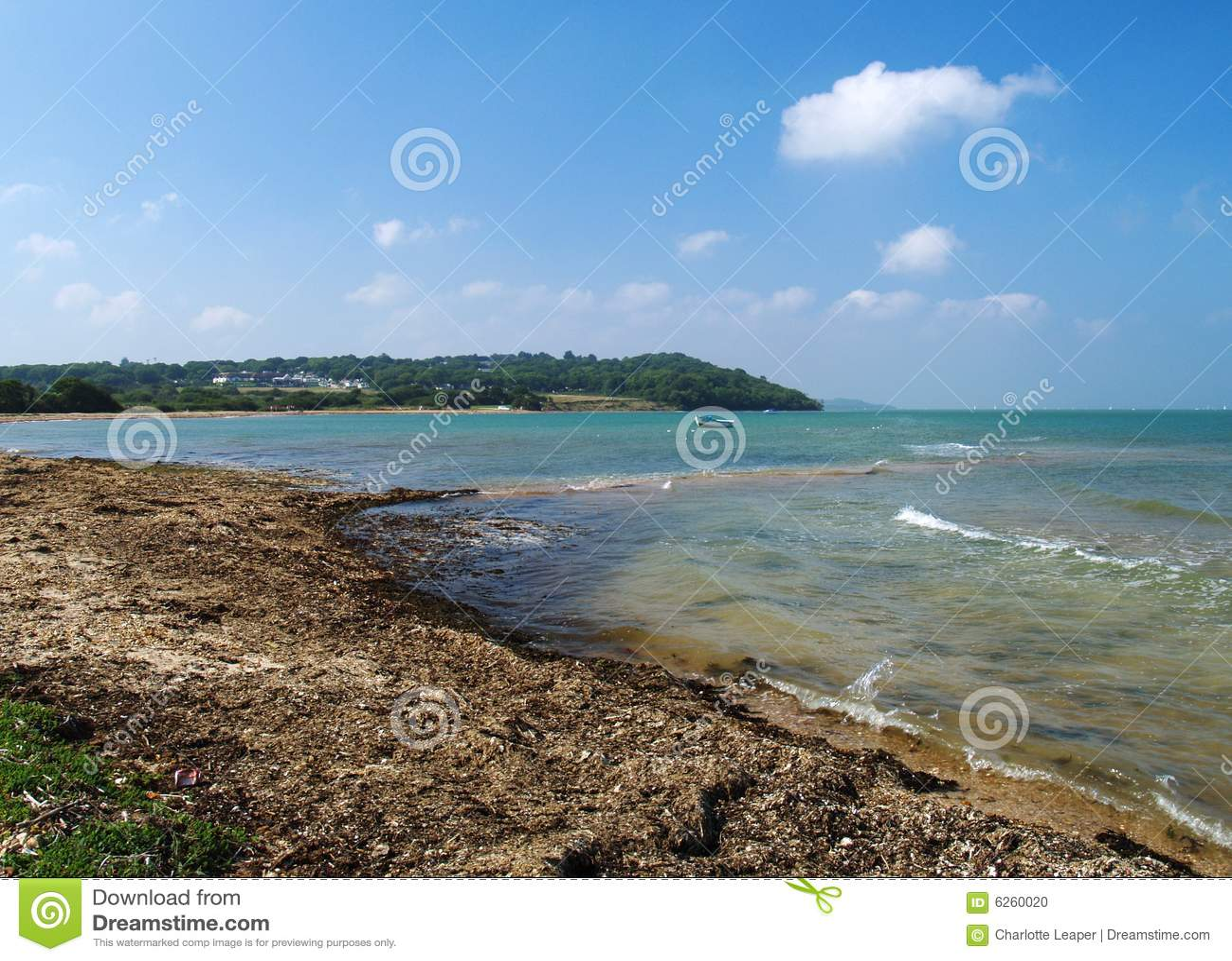 Île de côte de Wight