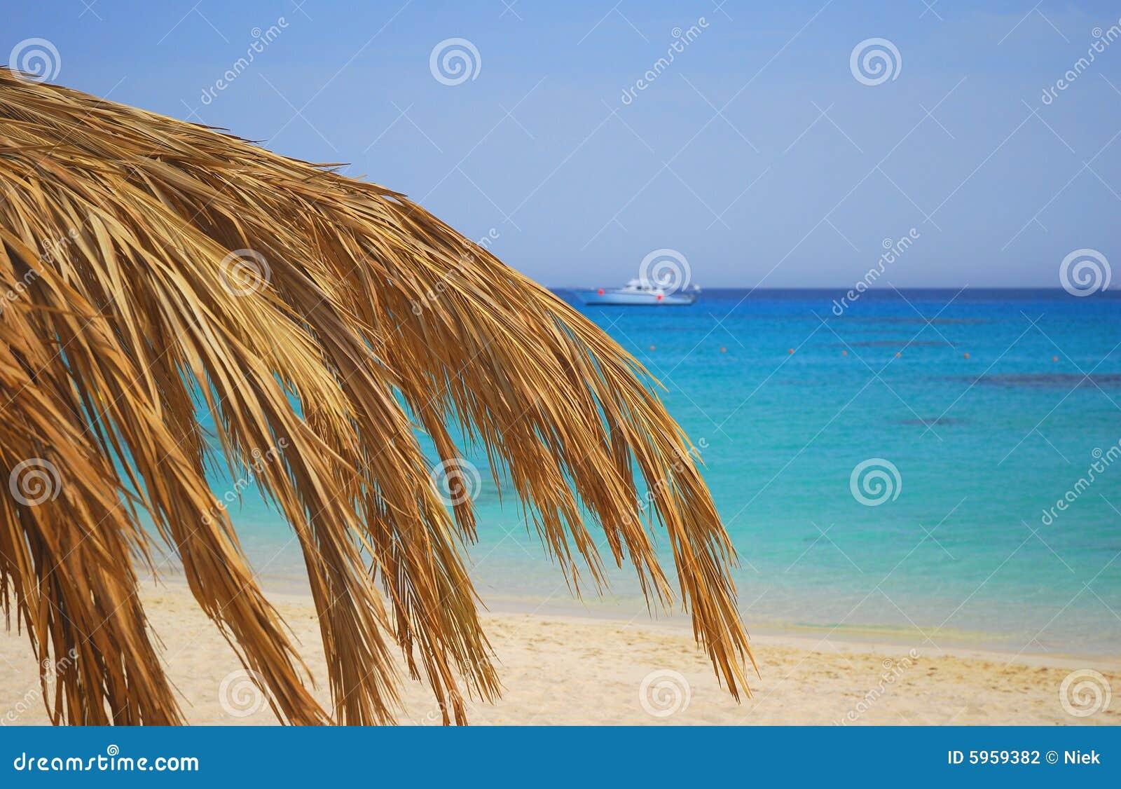 Île de Giftun en Egypte