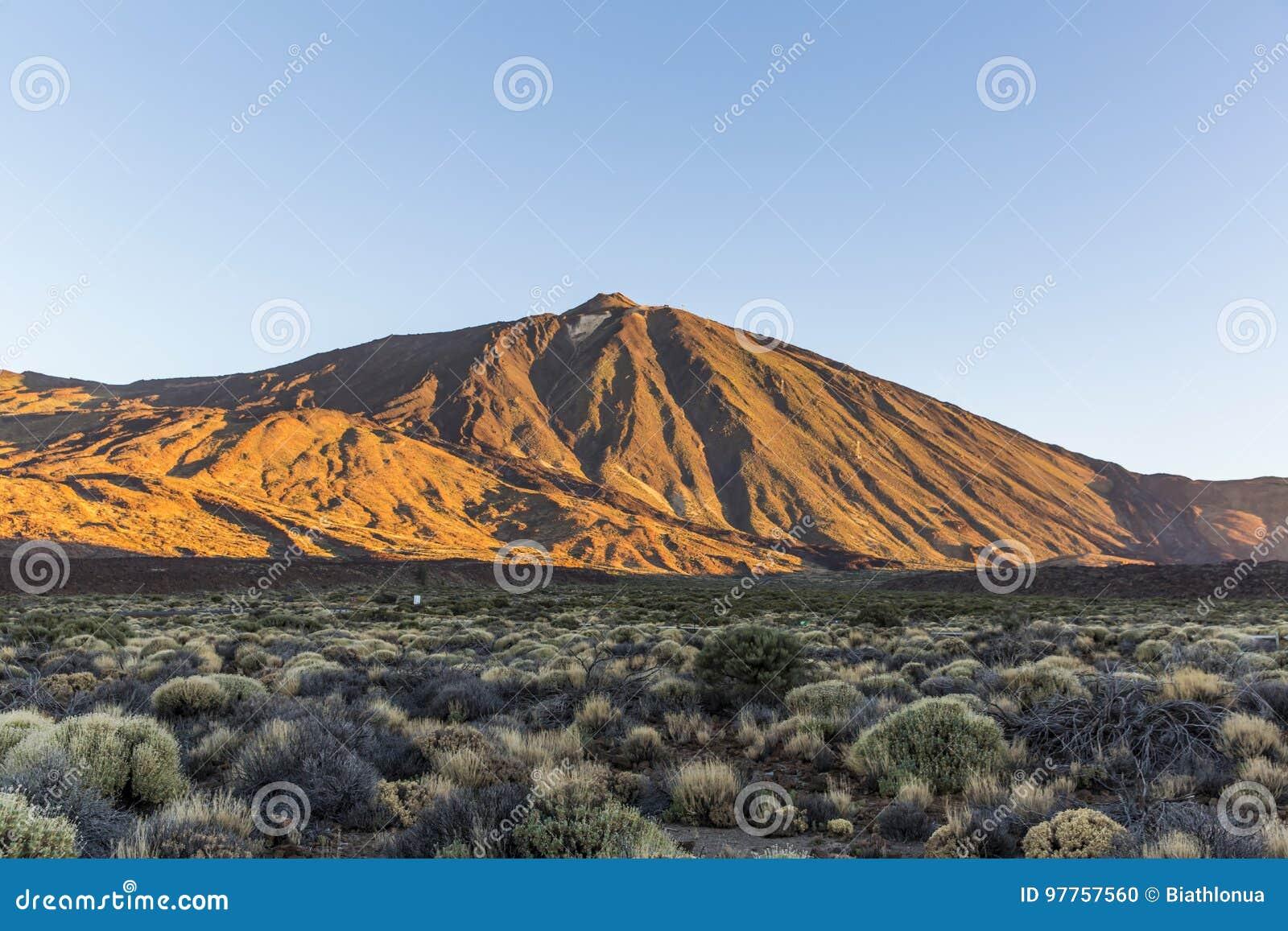 Îles Canaries, Ténérife Parque Nacional Del Teide