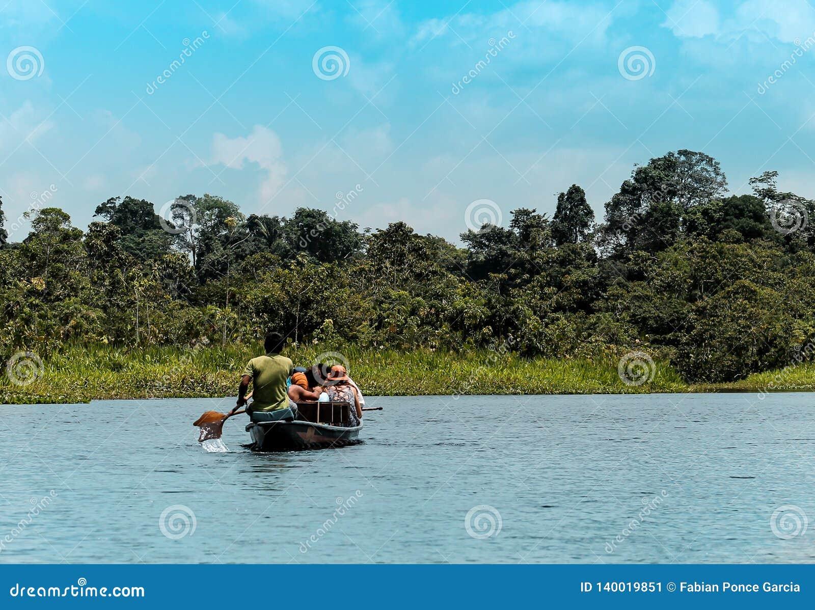Σκηνή ποταμών στο Αμαζόνιο του Ισημερινού στη μέση της φυλλώδους βλάστησης