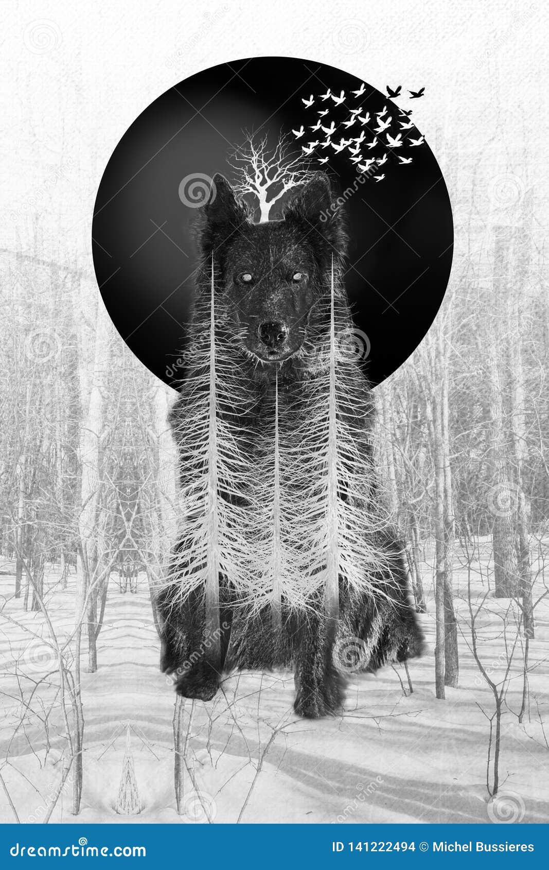 Σκυλί και δασικό σύνθετο δέντρων