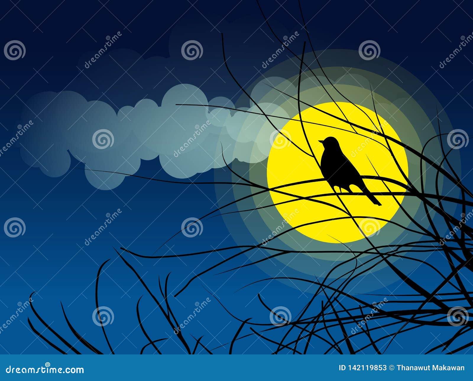 Συνεδρίαση σκιαγραφιών πουλιών σε ένα υπόβαθρο κλάδων δέντρων του σεληνόφωτου
