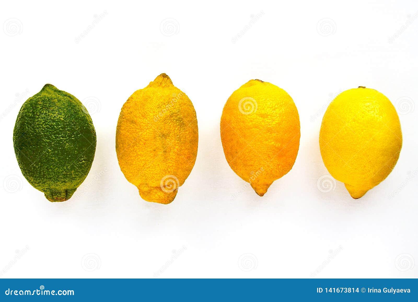 Τέσσερα λεμόνια της διαφορετικής ωριμότητας βρίσκονται σε έναν πίνακα ή σε ένα άσπρο υπόβαθρο