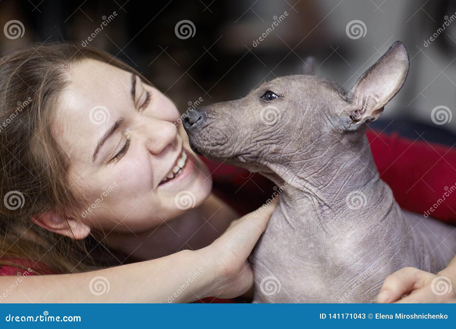 Τα δύο μηνών κουταβιών της σπάνιας φυλής - Xoloitzcuintle, ή μεξικάνικο άτριχο σκυλί, τυποποιημένο μέγεθος, με τη νέα γελώντας γυ